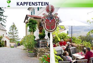 t_320_kapfenstein