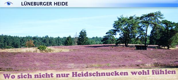 60um_slide_lueneburger_heide